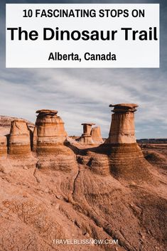 A guide on the fascinating things to see along the dinosaur trail in Alberta, including the best lookout spots and the famous hoodoos. Cool Places To Visit, Places To Travel, Travel Destinations, Canadian Travel, Canadian Rockies, Dinosaur Museum, Voyage Canada, Alberta Travel, Travel Guides
