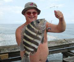 Ron Slayman of Massillan, Ohio with a nice sheepshead caught on the Ocean Isle Bridge,