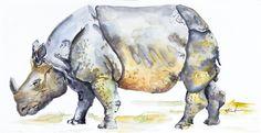 AJ Currado - Rhino