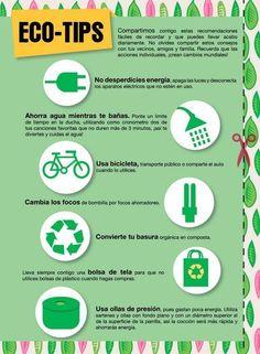 Eco tips para compartir #ecotips #cuidaelambiente