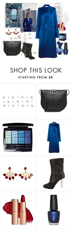 """""""nina ricci long coat and etc...........by rousou"""" by rousou on Polyvore featuring Nina Ricci, Christian Dior and OPI"""