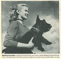 this could fit under so many of my boards...anyway, 1944 Life magazine photo of a girl and a Scottie wearing matching plaid dog collars