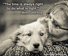 The time is always right to do what is right. #MartinLutherKing #wisewords
