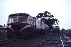 Railmotor at Mornington - 1973