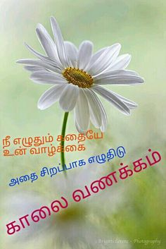 Tamil Quotes Good Morning Messages, Good Morning Wishes, Good Morning Quotes, Tamil Love Quotes, Swami Vivekananda Quotes, Beautiful Roses, Inspirational Quotes, Motivational, Picture Quotes