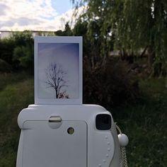 Polaroid Pictures, Polaroids, Polaroid Instax, Instant Camera, Photo Ideas, Seasons, Photos, Shots Ideas, Polaroid Photos