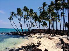 Hawaii Teil II - Big Island. - LILA + GLÜCKLICH