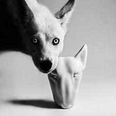 sculpture dog interrior design