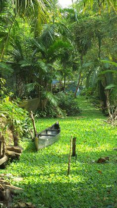 aleppuza kerala kochi ,india one of the awsomest place to visit..