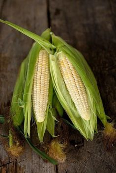 QUICKIE CORN (F1 HYBRID, SE 64 DAYS) SU*sold out* - Pinetree Garden Seeds - Vegetables