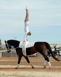 Vaulting.  I'm pretty good at this UNTIL I have to dismount.  Ouch!  My knees are too old!