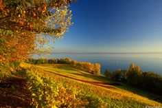 Lac de Neuchâtel.