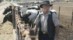 Newsela | Cow dung power comes clean in California