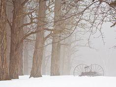 Misty Hay Rake, New England
