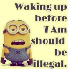 Funny Minion Pictures Below are some very funny minions memes, and funny quotes, i hope you will enjoy them at your best . and why not whatever minions do they always look funny and stupid . So make sure to share the best minions with your friends . Humor Minion, Funny Minion Memes, Minions Quotes, Funny Jokes, Hilarious, Minion Sayings, Citation Minion, Funny Minion Pictures, Funny Good Morning Quotes