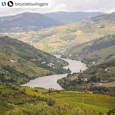 #Repost @bicycletouringpro  The view from my handlebars - bicycle touring along the Douro river in Portugal  #bicycling #ricardo #liveloveride #biketour #biketouring #bikepacking #portugalbiketours #portugal #douro #travelportugal #tourleader #adventurecycling #adventuretravel by prelives51