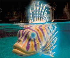 Swimming Pool Fish Bots | DudeIWantThat.com