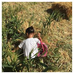 Pin for Later: North West Goes on the Most Adorable Easter Egg Hunt