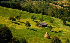 Moeciu de Jos, Brasov, Romania (by Adrian Petrisor) Tilt Shift Photography, Types Of Photography, Tilt Shift Photos, Tilt Shift Lens, Shallow Depth Of Field, Small World, Pixel Art, Deviantart, Outdoor Decor
