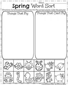 math worksheet : animal and plant sorting  sorting printable worksheets and  : Sorting Worksheets For Kindergarten Printable