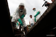 """""""ขบวนการลักลอบทิ้งกากอุตสาหกรรม""""  หน่วยเฝ้าระวังมลพิษทางน้ำของกรีนพีซเก็บตัวอย่างน้ำเสียบ่อขยะ ซ. อ่อนนุช 86    © เริงฤทธิ์ คงเมือง/ Greenpeace"""