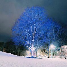 Simone captures the meaning of #lightislife through the night lights, in Uppsala, Sweden where we lit up a park. #lightupthedark