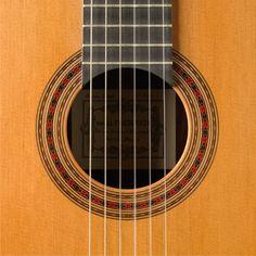 Daniel Friederich 2000 | Harris Guitar Foundation