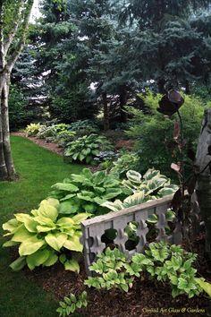flowersgardenlove: Hosta garden Beautiful