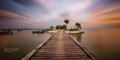 Coconut Island - coconut island on ko samui at lama beach