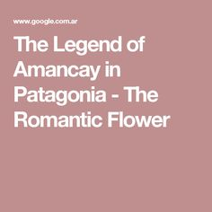 The Legend of Amancay in Patagonia - The Romantic Flower