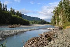 Hoh Rainforest River in Olympic National Park