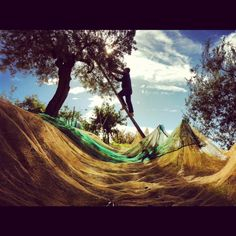 #Abruzzo #olive picking.. making #oliveoil is a #lifestyle! #activeholiday in #Abruzzo adopt an #olivetree PH: T. S . BOGATSU
