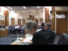 Part 1 of the WDC meeting about Hunderwasser Wairau Maori Art Centre