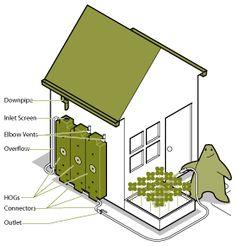 Rainwater HOGs | Rainwater HOG.  Reuse of rainwater is a great way to irrigate landscaping.