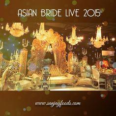 Asian Bride Live 2015 at the ICC Birmingham