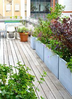 Big Planters on Terrace.jpeg Bepflanzung große Dachterrasse in Berlin Glasfaser Pflanzgefäße