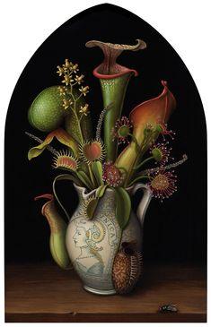 Madeline von Foerster - still life Vintage Botanical Prints, Botanical Drawings, Botanical Art, Illustration Botanique, Plant Illustration, Poster Xxl, Plante Carnivore, Carnivorous Plants, Plant Art