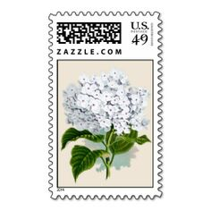 =>Sale on          	Vintage Hydrangea on postage           	Vintage Hydrangea on postage We provide you all shopping site and all informations in our go to store link. You will see low prices onDeals          	Vintage Hydrangea on postage lowest price Fast Shipping and save your money Now!!...Cleck Hot Deals >>> http://www.zazzle.com/vintage_hydrangea_on_postage-172733421842080821?rf=238627982471231924&zbar=1&tc=terrest