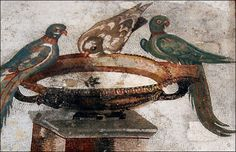 #Pompeii  --  Roman Mosaic Work Excavated From Ancient Pompeii  --  Archaeological Museum  --  Naples, Italy