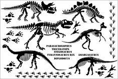 Resultados de la Búsqueda de imágenes de Google de http://www.boscobear.com.au/images/stories/product_images/dino_bones/dinosaur_bones_sheet.png