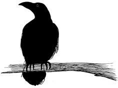 Jesper Waldersten - Raven