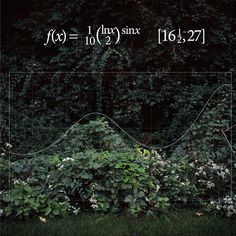 Functions. Photographer finds the equations hiding in her pictures