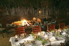 Set amidst the breathtaking splendour of the far northern reaches of Kwazulu-Natal is Amakhosi Safari Lodge, located on the edge of the Mkuze river in the Amakh… Kwazulu Natal, Ice Climbing, Rafting, Safari, Africa, Table Decorations, Dinner Table Decorations