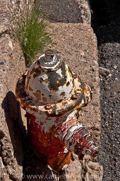#45  Fire hydrant in Jerome, Arizona.
