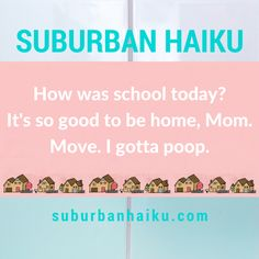 Remember that time I accidentally wasted two months of my life scouring the internet for miracle beauty treatments? School Today, Haiku, Shit Happens, Haikou