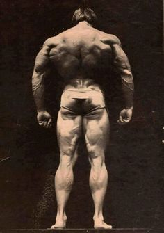 i think this is franco columbu's 70s big back