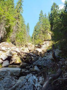Cetatile Ponorului cave, Bihor County, Romania Romania, Cave, Places, Outdoor, Outdoors, Outdoor Living, Garden, Caves, Lugares