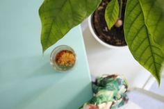 Vihreä chia-vanukas banaanista, evoken appelsiinimehusta ja spirulinasta.