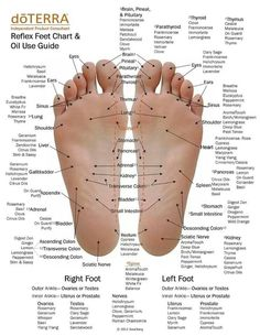 Reflexology Foot Chart & doTerra Oil Use Chart! Feel free to message me with any questions. #SynergisticHealthSolutions .org Order your oils today from: http://mydoterra.com/llc