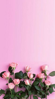 Wallpapers cartomagem pinterest wallpaper pink flowers on pink background mightylinksfo